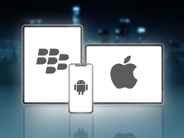 hybrid mobile app development